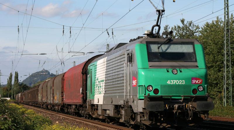 Route de la Soie: les porcs français bouderont-ils les ports chinois?