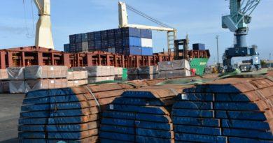 En important des produits forestiers, le GPM La Rochelle participe à la déforestation selon reporterre.