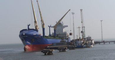 Au port de Banjul, en Gambie, le bois de rose est exporté illégalement