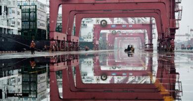 Chine Conteneurs APM Terminals Port Qingdao
