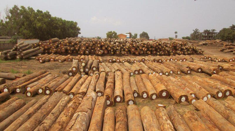 Produits forestiers Afrique